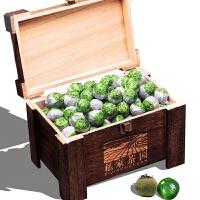 普洱茶柑普茶新会陈皮熟茶木质礼盒装茶叶1000g