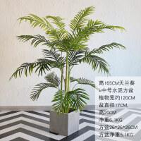 大型落地客厅餐厅绿植装饰品北欧家居室内天竺葵仿真植物盆栽摆件 +方形水泥盆