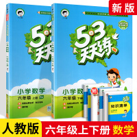 53天天练数学六年级上下册2本套装 人教版 RJ版 小学六6年级口算速算五三天天练数学思维训练 五三