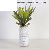 假多肉盆景创意家居客厅室内绿植装饰品北欧仿真植物盆栽摆件