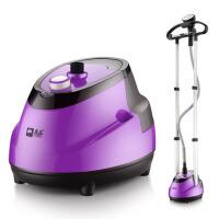 双杆蒸汽挂烫机 家用小型立式烫衣服挂式熨烫机 双杆紫色10档