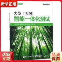大型IT系统智能一体化测试 中国民生银行信息科技部 电子工业出版社