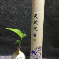 天然沉香野生老料礼佛专用有竹签线香