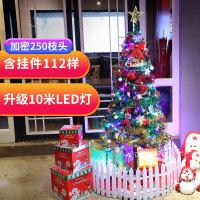 泰蜜熊圣诞节树装饰品60cm/1.5米发光圣诞树套餐装豪华加密10米LED彩灯圣诞礼品
