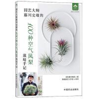 园艺大师藤川史雄的100种空气凤梨栽培手记