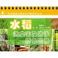 【全新直发】水稻病虫害及防治原色图册 傅强,黄世文,谢茂成 编著