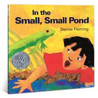 英文原版绘本【童书/正版】In the Small Small Pond 小小池塘 凯迪克银奖 进口正版 启蒙幼儿英语