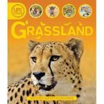 【预订】Grassland