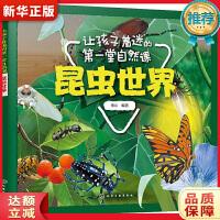 让孩子着迷的第一堂自然课――昆虫世界 童心 化学工业出版社9787122337320【新华书店 购书无忧】