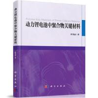 动力锂电池中聚合物关键材料 崔光磊 科学出版社 9787030580290