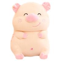 毛绒公仔娃娃送女生 小猪抱枕抱抱熊睡觉女生大号毛绒玩具可爱床上女孩趴趴猪公仔娃娃 米白色 站姿羽绒棉猪