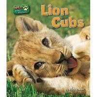 【预订】Lion Cubs