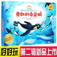好好玩神奇的生命立体书第二辑 勇敢的帝企鹅 带孩子走入会动的科普王国 3-6岁儿童3D立体翻翻书 了解生命益智游戏幼儿专注力训练书