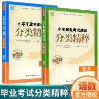 小学毕业考试试题分类精粹小升初语文数学2021新版通城学典