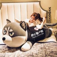 哈士奇公仔娃娃可爱毛绒玩具女孩生日礼物床上抱着睡觉的抱枕玩偶