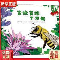漂流瓶绘本馆-蜜蜂蜜蜂了不起 [澳] 娜塔莉・麦金农,[新西兰] 玛格丽特・托兰德 绘, 明天出版社978757080
