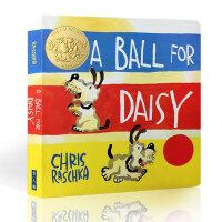【全店300减100】英文原版进口 凯迪克金奖 A Ball for Daisy黛西的球 幼儿启蒙纸板书