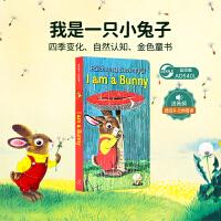 现货包邮 英文原版 I am a bunny 我是一只兔子 0-3-6岁低幼儿童英语早教启蒙撕不烂的木纸板书 赠音频