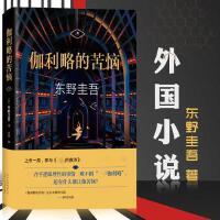 正版 伽利略的苦恼 精装 外国文学 悬疑推理侦探小说 东野圭吾的书 嫌疑人X的献身和圣女的救济之间的故事 白夜行魔女书