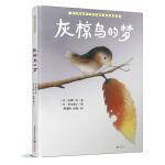 暖房子国际精选绘本・灰椋鸟的梦