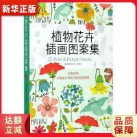 植物花卉插画图案集 鲍伊风尚;刘静 上海人民美术出版社 9787558605369