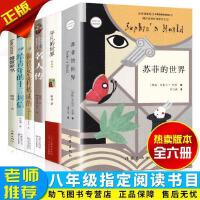 全套6册 八年级下册指定阅读苏菲的世界+平凡的世界+名人传+给青年的十二封信+钢铁是怎样炼成的和傅雷家书初中生原著正版