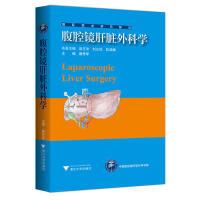 腹腔镜肝脏外科学 国际医药研究前沿优秀专译著