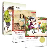 国际大奖小说 套装共3册 苹果树上的外婆+爱上读书的妖怪+屋顶上的小孩 少儿童文学 7-12-15岁成长励志小说 国内