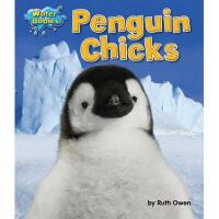 【预订】Penguin Chicks