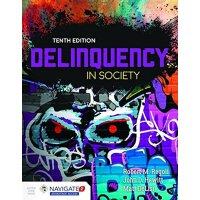 英文原版Delinquency In Society社会逾期