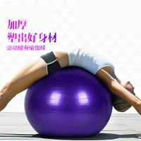 瑜伽球加厚减肥运动健身球初学者儿童助产孕妇瑜珈球