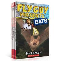 英文原版FLY GUY Presents: firefighter/snake/sharks/dinosaurs/sp