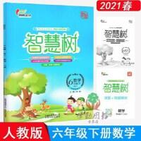 2020新版 智慧树 数学六年级下 人教版 成风文化 内附试卷+答案