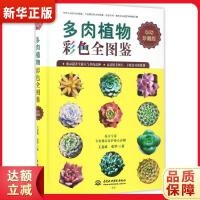 多肉植物彩色全图鉴 王意成 张华 9787517051961 水利水电出版社