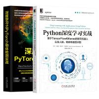 【全2册】正版 深度学习之PyTorch物体检测实战+Python深度学习实战 基于TensorFl