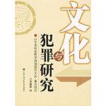 文化与犯罪研究李锡海9787811093186公安大学出版社