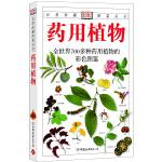 药用植物:全世界700多种药用植物的彩色图鉴――自然珍藏图鉴丛书