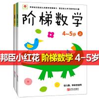 阶梯数学4~5岁上下 小红花 2册趣味数学启蒙书趣味全脑思维升级训练教材右脑左脑开发全书儿童智力开发书潜能开发阶梯数学