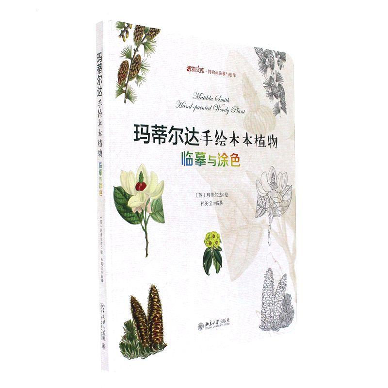 玛蒂尔达手绘木本植物-临摹与涂色