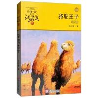 正版全新 动物小说大王沈石溪品藏书系新版:骆驼王子
