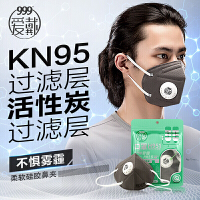 999爱戴口罩H951 防霾防尘透气pm2.5活性炭带呼吸阀 灰色3只装