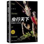虫行天下:繁盛的六足传说