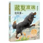 藏獒渡魂(动物世界沈石溪画本 美绘注音版)