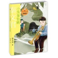 【二手旧书9成新】小鬼鲁智胜-秦文君-9787558901706 少年儿童出版社