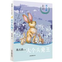 沈石溪十二生肖动物小说――大个头兔王