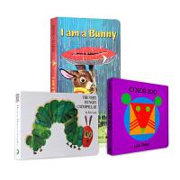 英文原版绘本 Color Zoo颜色动物园/I am a Bunny我是一只兔子/The Very Hungry Ca