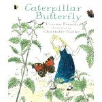 英文原版绘本 Caterpillar Butterfly 毛毛虫变蝴蝶 小学STEM百科科普图画书 Walker Na