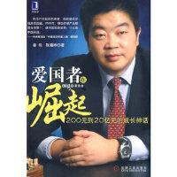 【新书店正版】爱国者在崛起姜伟,陈曦桦9787111253211机械工业出版社