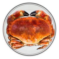 速鲜 爱尔兰进口面包蟹800-600g*2只装鲜活熟冻黄金蟹珍宝蟹膏蟹大螃蟹