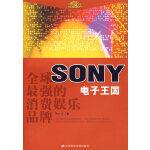 全球最强的消费娱乐品牌电子王国SONY